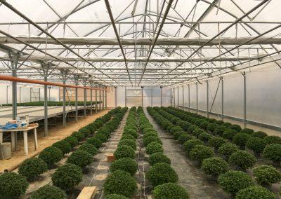 Energiaernyő, gördülő termesztőasztal kivitelezés